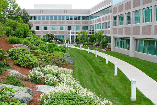 commercial lawn maintenance Woodbridge Ontario