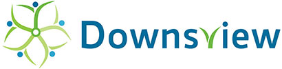 downsview ice control management service
