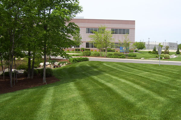 retail landscaping lawn maintenance contractors North York